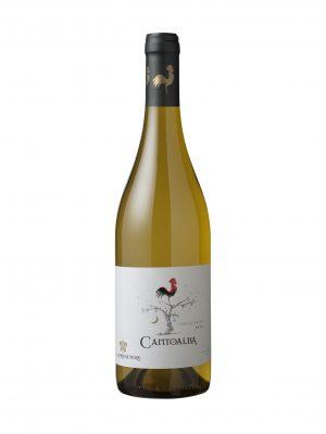 rượu vang Cantoalba Chardonnay