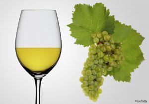 Giống nho trắng Chardonnay