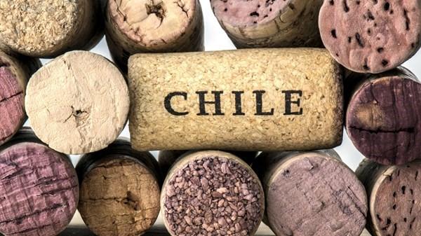 vang Chile giá rẻ