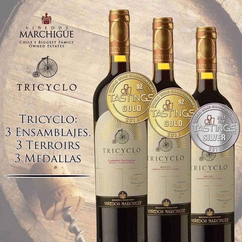 Vang Tricyclo