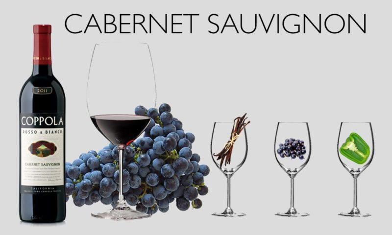 Giống nho Cabernet Sauvignon