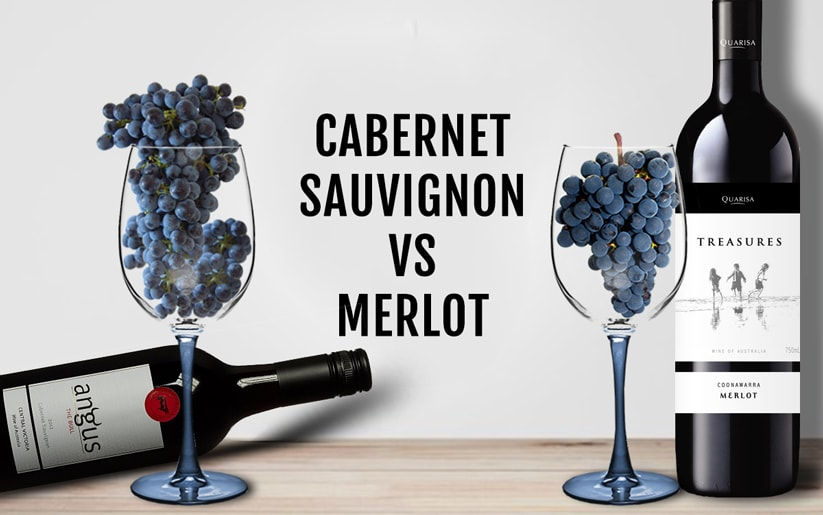 So sánh nho Merlot và nho Cabernet Sauvignon